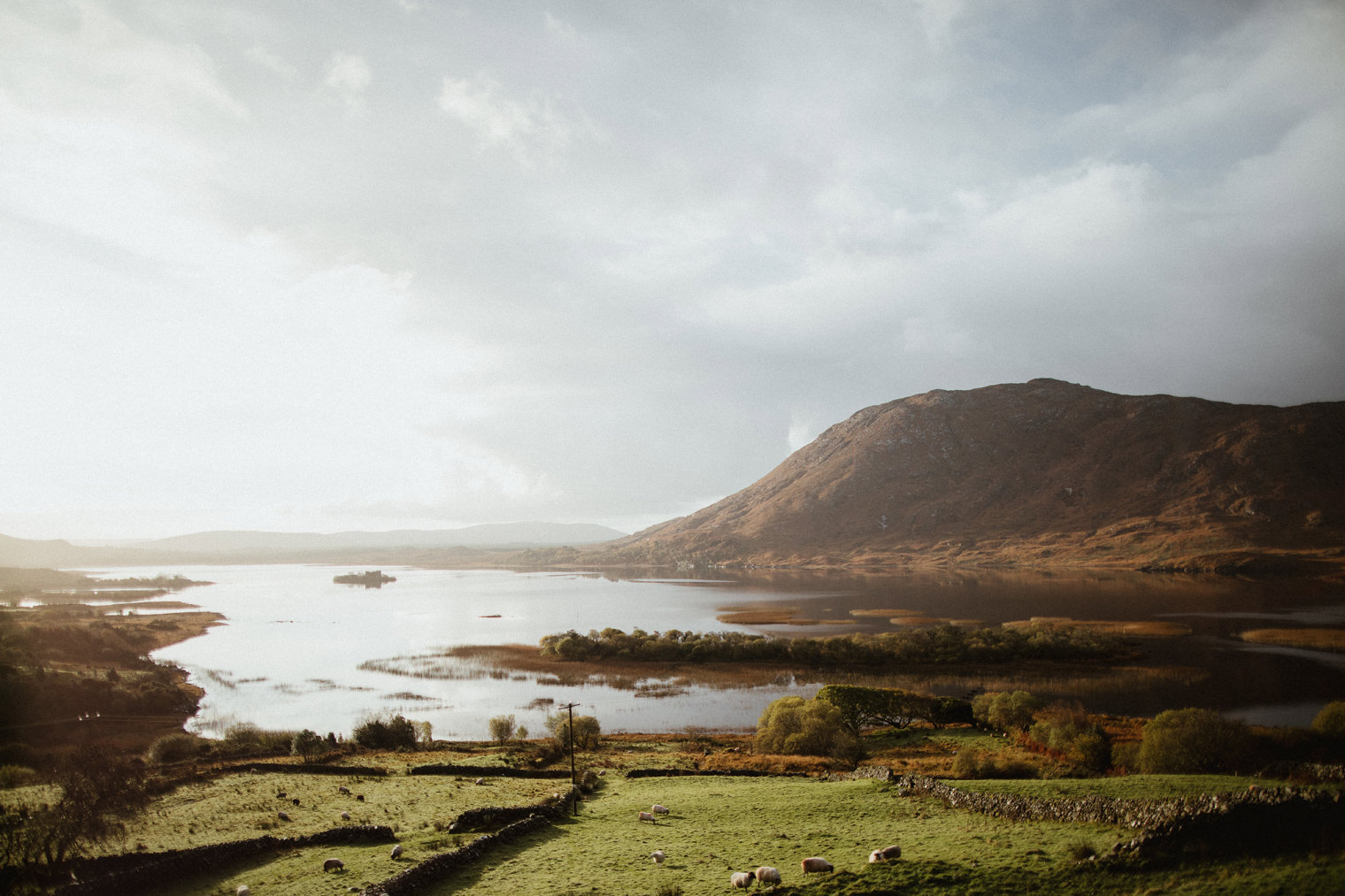 Connemara Wedding Photographer